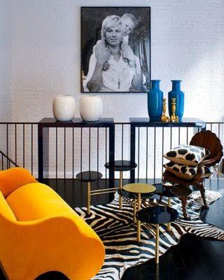 Sebra på svart gulv med oransje lenestol