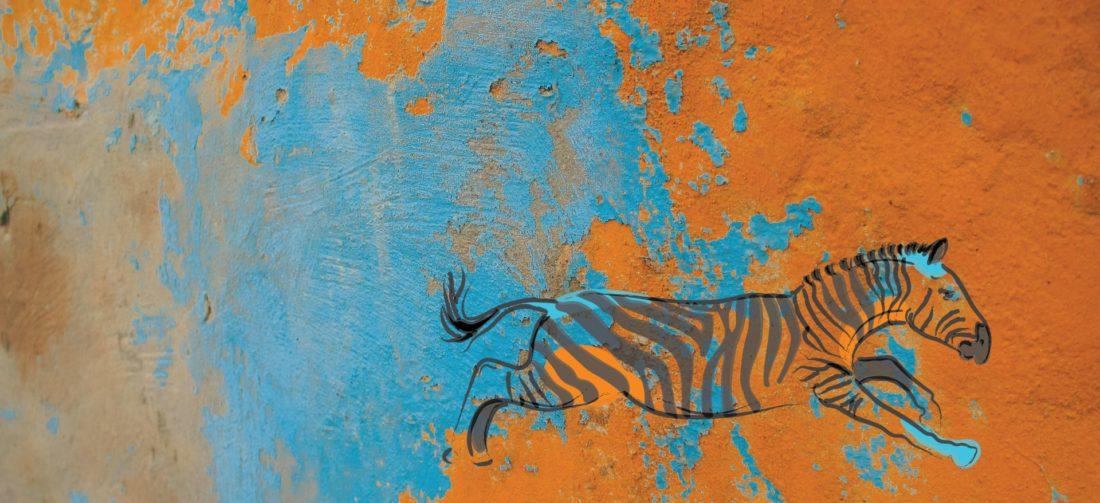 zebra logo sebraskinn